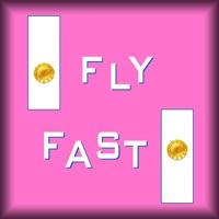 Codes for FlyFast Hack