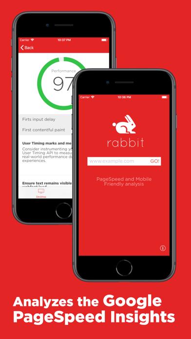 Rabbit for Google PageSpeed screenshot