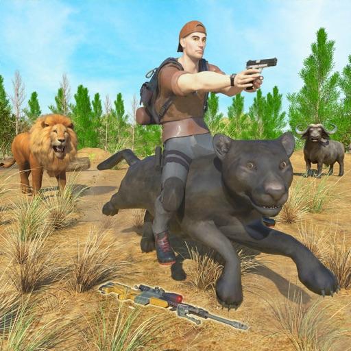 Wild Ride & Attack Game