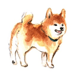 Watercolor Shiba Inu Dog Icon
