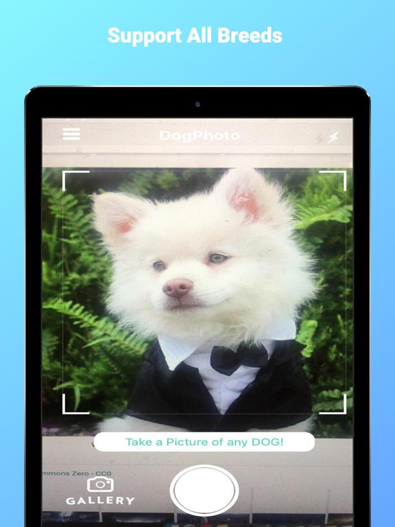 DogPhoto - Dog Breed Scanner screenshot 10