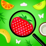 iFindo: Find Hidden Objects