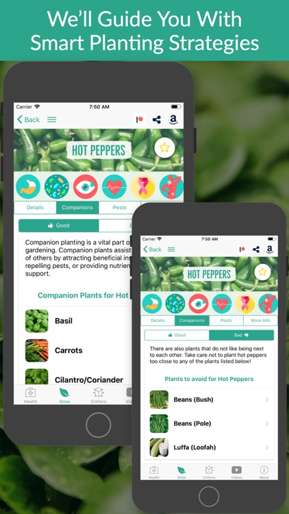 From Seed to Spoon Gardening screenshot-3