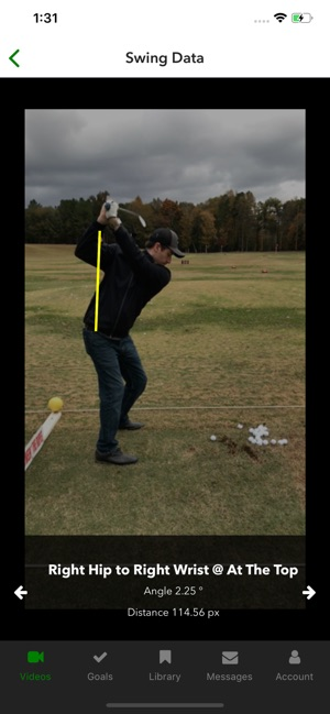 Swingbot: Swing Analysis Coach on the App Store