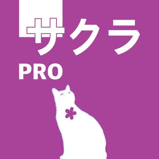 五十音圖Pro
