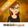 MosaLingua : cours de langues