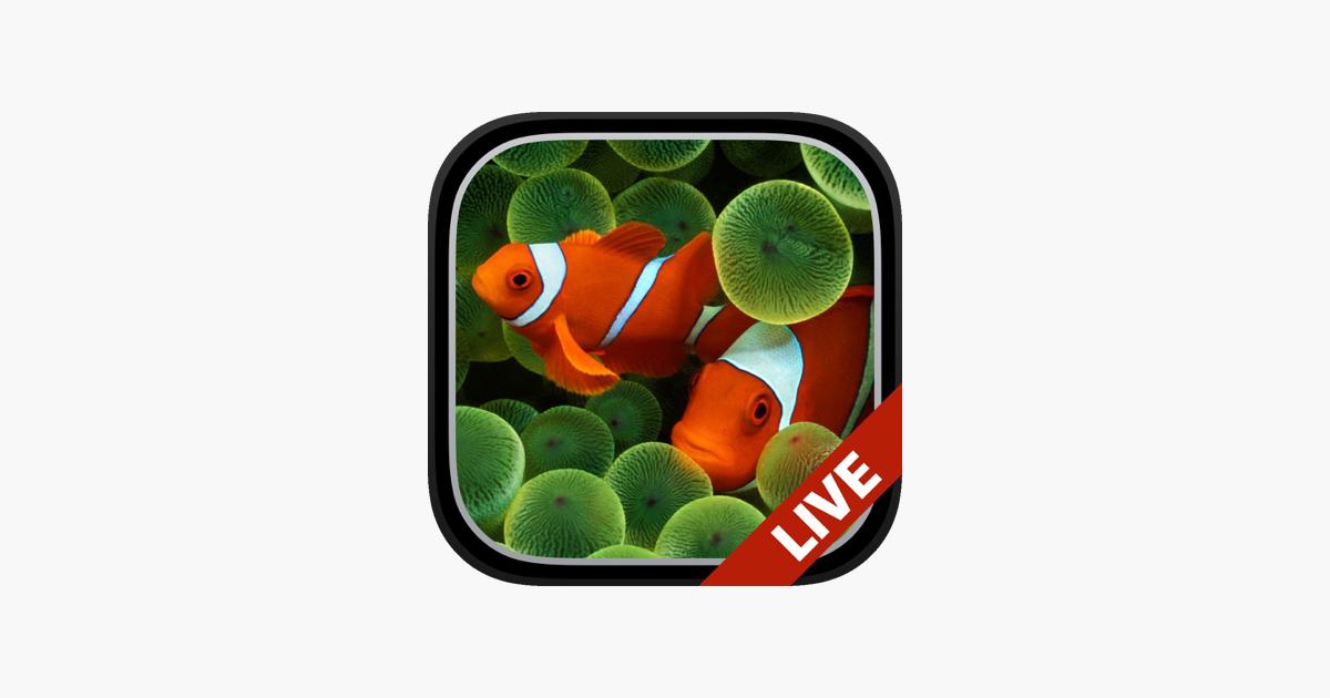 Aquarium Fonds D Ecran Animes Dans L App Store