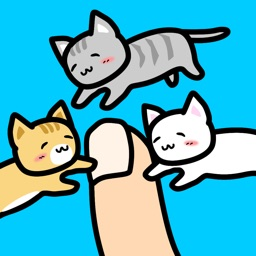 Play with Cats