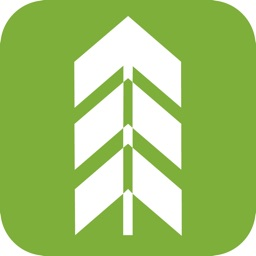 Thrive Church Elk Grove