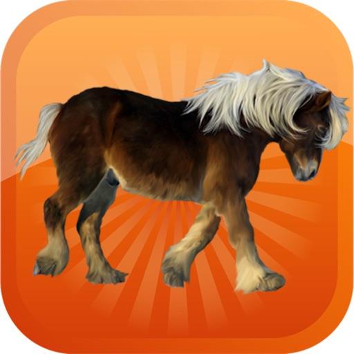 Pony-Horse Emojis Stickers