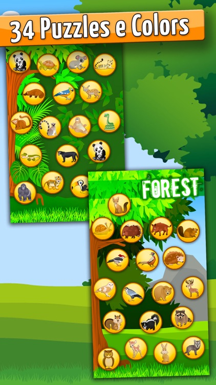 Forest:Toddlers Coloring Games