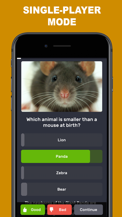 Questions & Answers: QuizzLand screenshot two