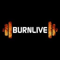 BurnLive Trainer
