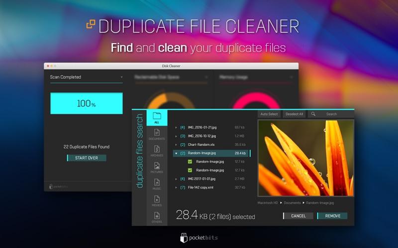 Disk Cleaner Pro Screenshot
