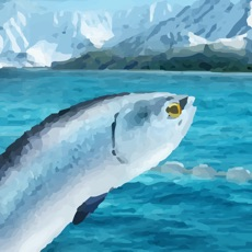Activities of Moneyfish
