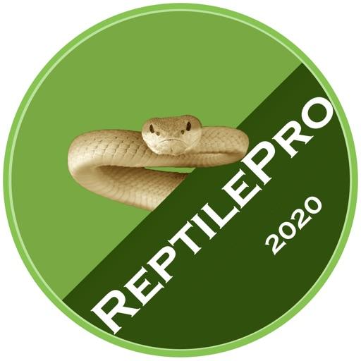 ReptilePro