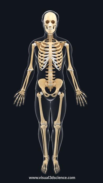 AR Skeleton Anatomy Screenshot