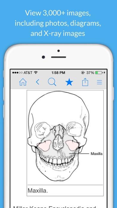 Dental Dictionary by FarlexScreenshot of 5