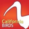Audubon Birds of California - iPhoneアプリ