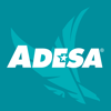ADESA Marketplace