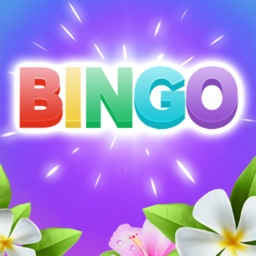 Bingo Relax
