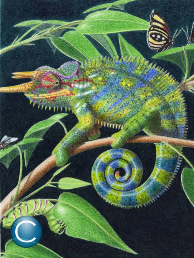 ABC Dino Español Screenshot