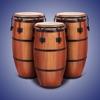 REAL PERCUSSION: ドラムパッド - iPadアプリ
