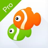 同程旅游Pro