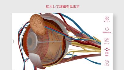 解剖学的構造と生理学のおすすめ画像3