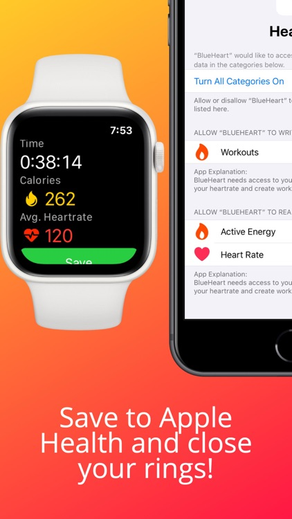 BlueHeart Bluetooth Heart Rate