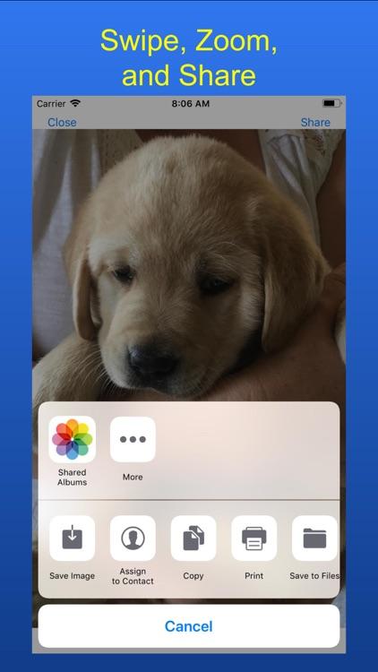 Search My Photos screenshot-5