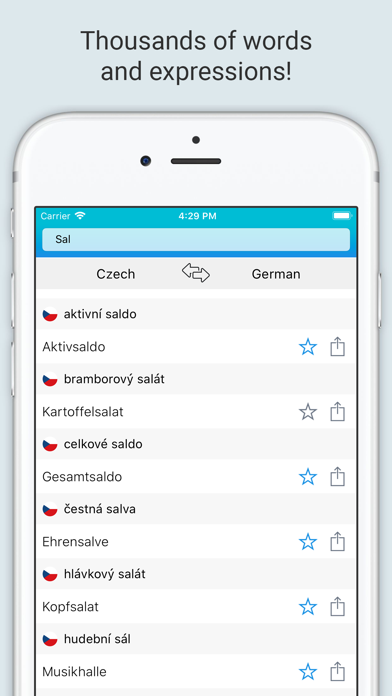 German Czech Dictionary + screenshot 3