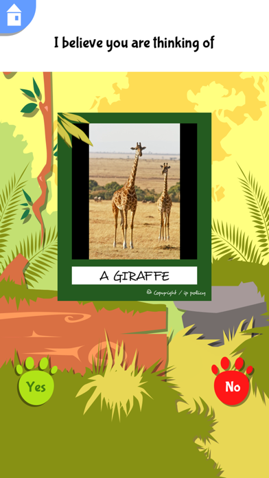 Akinator Safari - 窓用