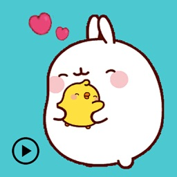 Animated Molang And Piu Piu