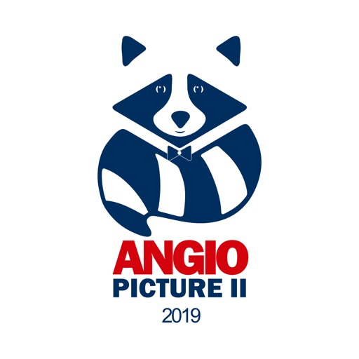 Angiopicture 2019