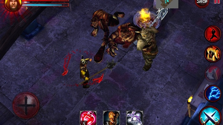 Dungeon and Demons Offline RPG screenshot-4