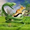 蟒蛇蛇 -狩猎和攻击