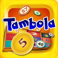 Codes for Tambola - Indian Bingo Hack