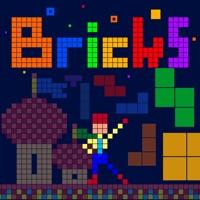 Codes for Fun! Bricks Hack