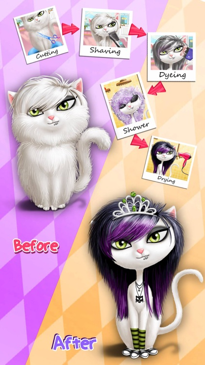 Animal Hair Salon & Dress Up