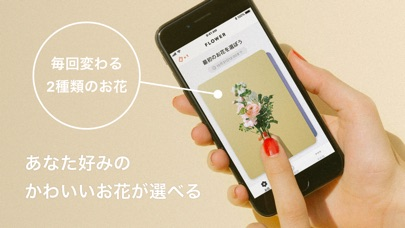 Screenshot for FLOWER かわいいが届くお花便 in Dominican Republic App Store