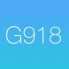 Golf Scorecard 918