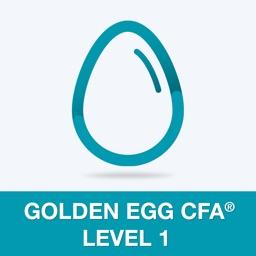 Golden Egg CFA® Exam Level 1