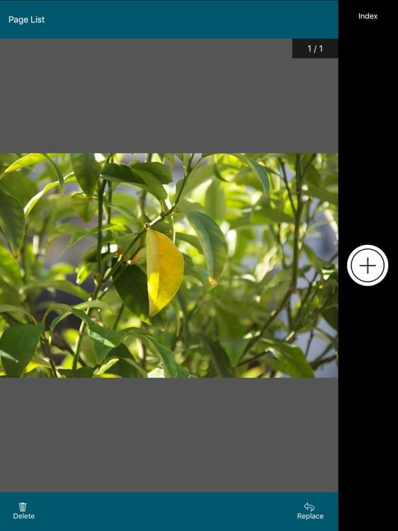 OnBase Mobile 18 for iPad screenshot-3