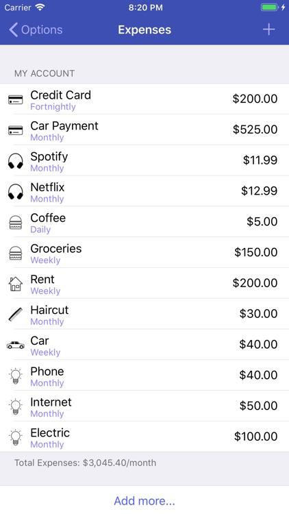 Cash Flow Companion screenshot-3