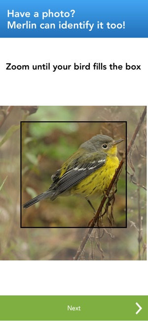 Merlin Bird ID by Cornell Lab on the App Store