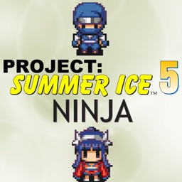 Project: Summer Ice 5
