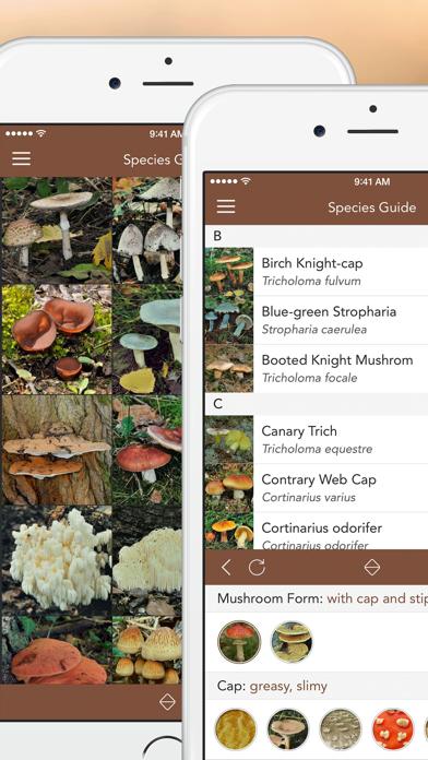 Mushroom LITE - Field Guideのおすすめ画像2