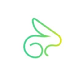 Rabbit Scooters