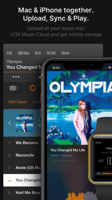 VOX – MP3 & FLAC Music Player screenshot one